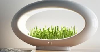 Lámparas – LED - Click and Grow – Grasslamp – jardinería - decoración