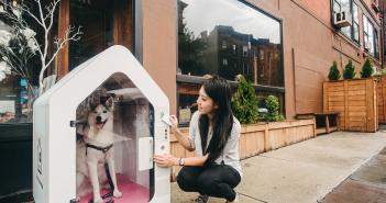 Dog Parker, Smart Home,