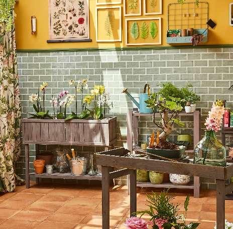 decoración, hogar, casa