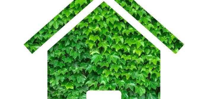 Hacer de la vivienda un espacio saludable