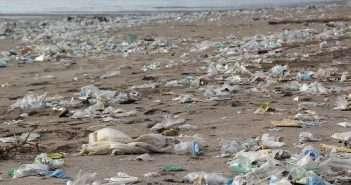 Junta Andalucia, plasticos, playas