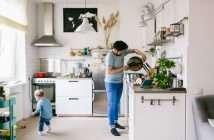 endesa, familias vulnerables, eficiencia energética