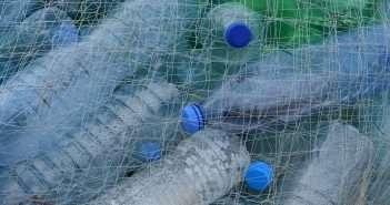plasticos, economía circular, reciclaje, residuos, informe